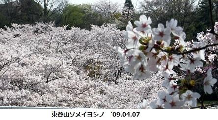 f:id:mikawakinta63:20160404163431j:image