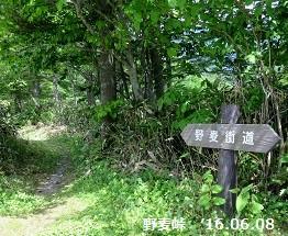 f:id:mikawakinta63:20160617174258j:image:right