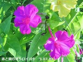 f:id:mikawakinta63:20160719204053j:image:left