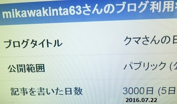 f:id:mikawakinta63:20160722173731j:image:left