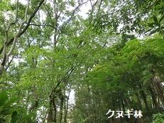 f:id:mikawakinta63:20160804164738j:image:right