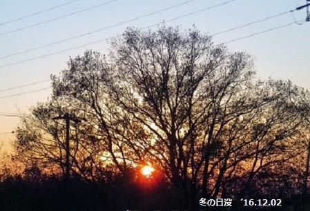 f:id:mikawakinta63:20161204194712j:image