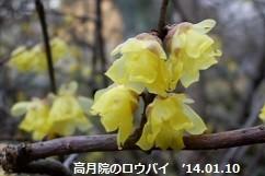 f:id:mikawakinta63:20161228160322j:image:left