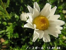 f:id:mikawakinta63:20170205200221j:image:left