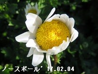 f:id:mikawakinta63:20170209195635j:image:left