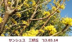 f:id:mikawakinta63:20170214201415j:image:left