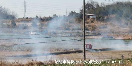 f:id:mikawakinta63:20170219162500j:image