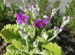 f:id:mikawakinta63:20170221181653j:image:right