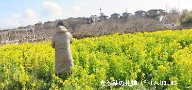 f:id:mikawakinta63:20170303141353j:image