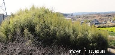 f:id:mikawakinta63:20170305165356j:image