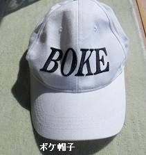 f:id:mikawakinta63:20170317171914j:image:right