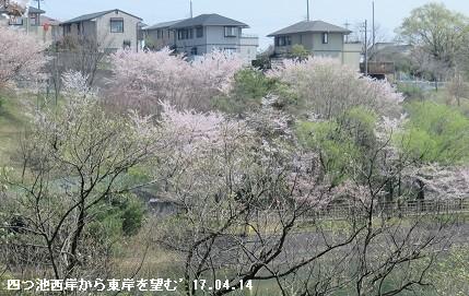f:id:mikawakinta63:20170414205417j:image