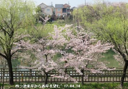 f:id:mikawakinta63:20170414212443j:image