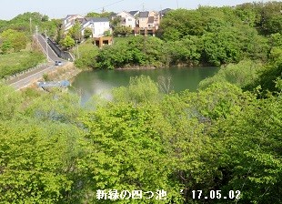 f:id:mikawakinta63:20170502203036j:image:left