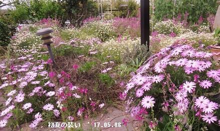 f:id:mikawakinta63:20170507160127j:image