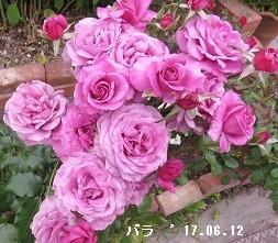 f:id:mikawakinta63:20170627145144j:image:left