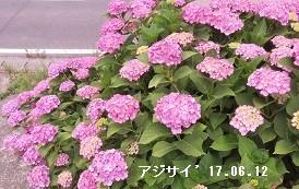 f:id:mikawakinta63:20170706151616j:image:left