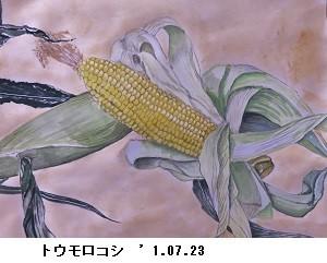 f:id:mikawakinta63:20170727143826j:image:right