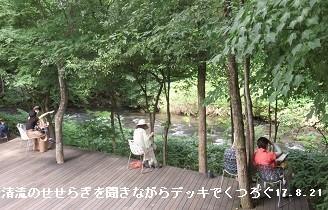 f:id:mikawakinta63:20170823195413j:image:left