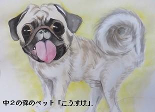 f:id:mikawakinta63:20170916212344j:image:left