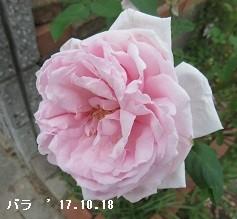 20171024194147