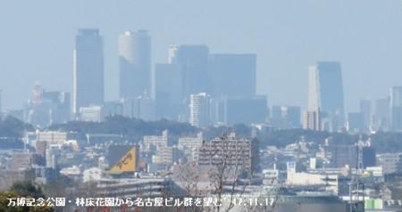 f:id:mikawakinta63:20171117171709j:image