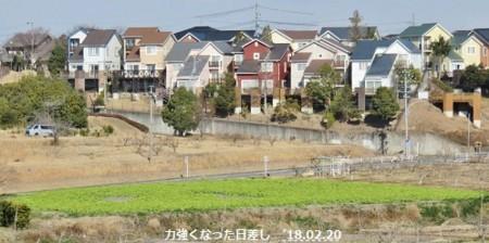 f:id:mikawakinta63:20180220131141j:image