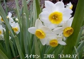 f:id:mikawakinta63:20180315133324j:image:right