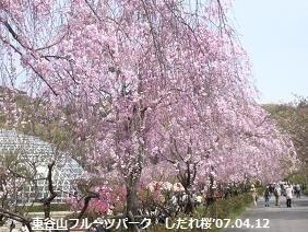 f:id:mikawakinta63:20180319132811j:image:left