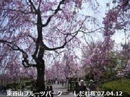 f:id:mikawakinta63:20180319141027j:image:right
