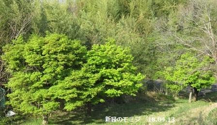 f:id:mikawakinta63:20180413173202j:image