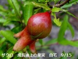 f:id:mikawakinta63:20180626144035j:image:right