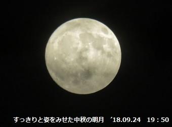 f:id:mikawakinta63:20180925213048j:image