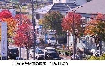 f:id:mikawakinta63:20181120204342j:image:right