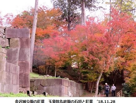 f:id:mikawakinta63:20181201153453j:image