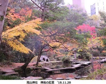 f:id:mikawakinta63:20181203090348j:image