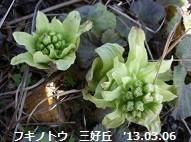 f:id:mikawakinta63:20190117195425j:image:left