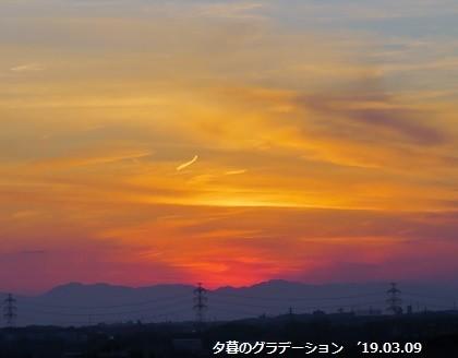 f:id:mikawakinta63:20190312125719j:plain