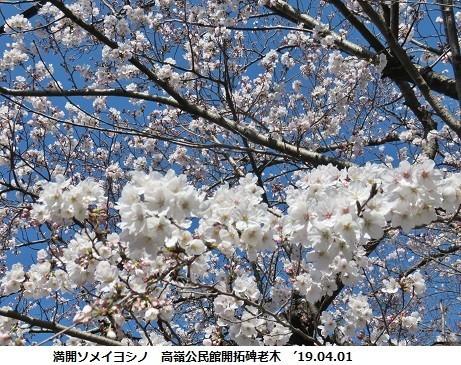 f:id:mikawakinta63:20190401134031j:plain