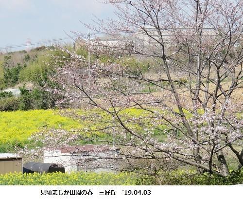 f:id:mikawakinta63:20190403175110j:plain