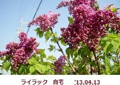 f:id:mikawakinta63:20190425134018j:plain