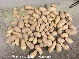 f:id:mikawakinta63:20190708140823j:plain