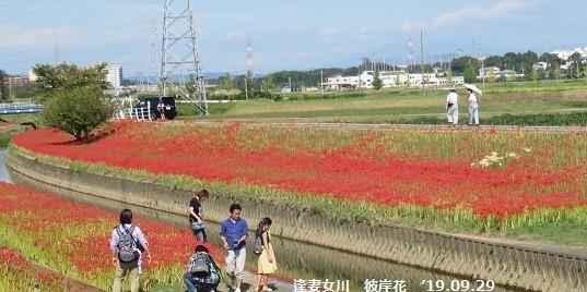f:id:mikawakinta63:20191001143009j:plain