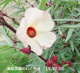 f:id:mikawakinta63:20191002152159j:plain
