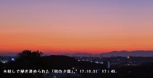 f:id:mikawakinta63:20191113145105j:plain