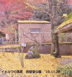 f:id:mikawakinta63:20191213161348j:plain