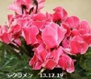 f:id:mikawakinta63:20191220151439j:plain