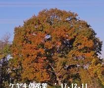 f:id:mikawakinta63:20191223155820j:plain