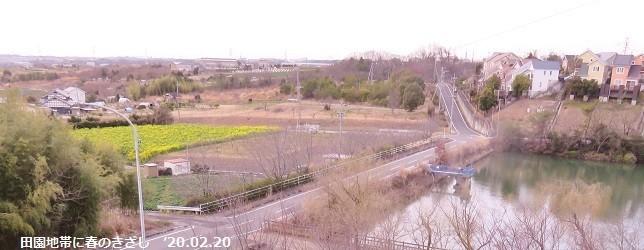 f:id:mikawakinta63:20200221171841j:plain