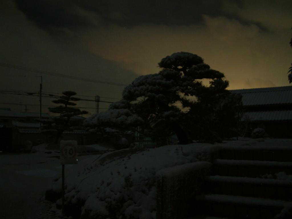 f:id:mikawakougei:20170115021158j:plain